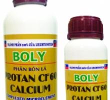 Phân bón lá Protan cf60 Calcium