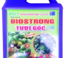 Phân bón lá Biostrong (5 lít)